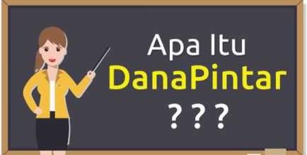 Mencari Pinjaman Uang Online Terpercaya Ajukan di Danapintar.com Saja