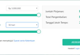 Mencari Pinjaman Online 24 Jam Coba Ajukan di danabijak.com